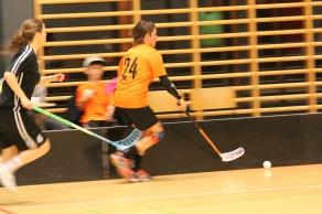 Rungsted Ladies Floorball 846
